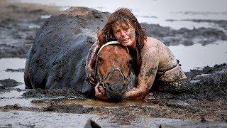 Tierarzt schaut panisch auf die Uhr und die Flut kommt, plötzlich hört das Pferd ein Brummen!