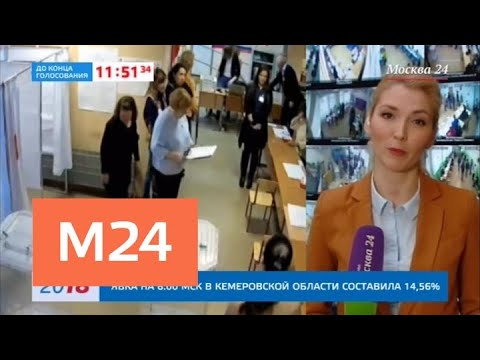 Более 1,5 миллиона человек воспользовались сервисом 'Мобильный избиратель' - Москва 24