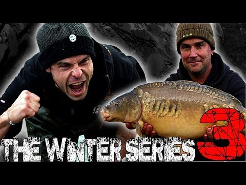 DNA Winter Series 3, Episode 2 - Elphicks Fisheries – Lee 'Mozza' Morris And Perry Alabaster