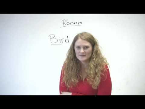 Pronunciation - Words starting with B (bird, beard, bear, bare...)
