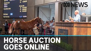 Inglis Easter Yearling Sale ho…