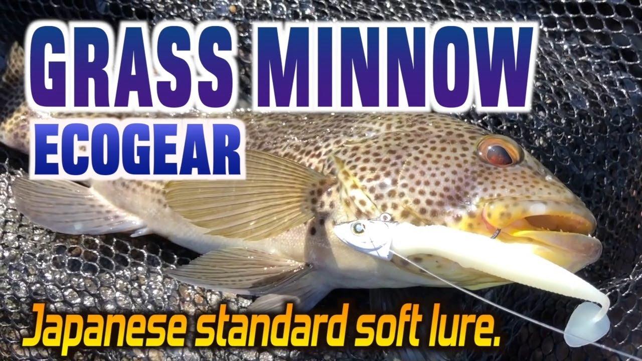 Ecogear Soft Lure Grass Minnow SS 1-1//8 Inch 15 piece per pack 228 8640