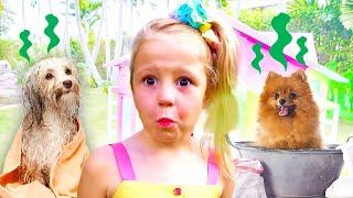 Nastya đưa chó cún đồ chơi đến phòng khám thú y, trò chơi bác sĩ
