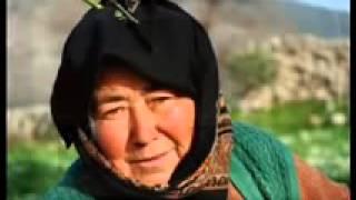 Yaşar Taner ANA MEY ACIS2