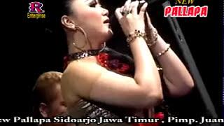 Gambar cover Irma Permatasari - Dusta - New Pallapa