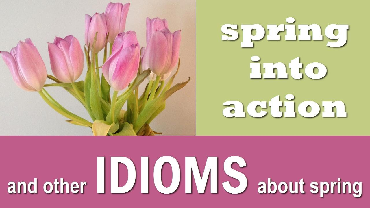 Spring Idioms And Sayings English Vocabulary Youtube