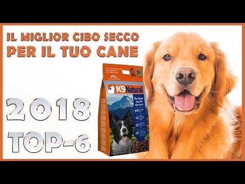 ALIMENTAZIONE CANE - Clinica veterinaria borghesiana - Roma from YouTube · Duration:  1 minutes 29 seconds