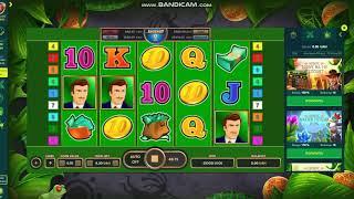 VipNetGame - Обзор онлайн казино NetGame от OnlineCasinoMD