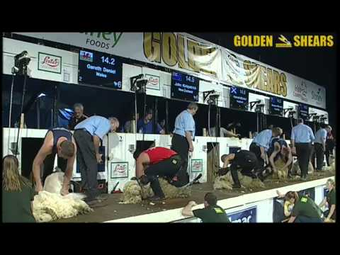 Golden Shears 2014 - World Shearing Final