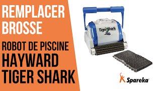 Comment remplacer la brosse du robot Hayward Tiger Shark ?