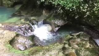 Абхазия - Сухум - Черниговка 4