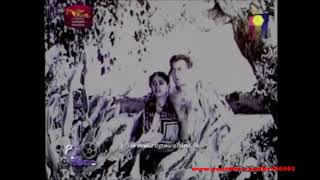 Thanha Asha (Original Movie Sound Track) - W D Amaradeva (1964) Thumbnail