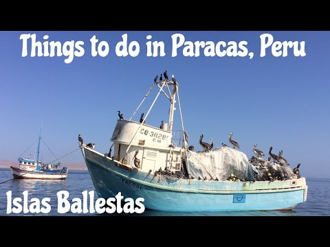 Thing to do in Paracas, Peru: Islas Ballestas Tour (Video 30)