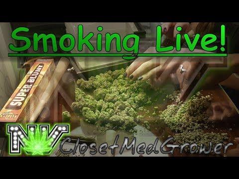 Smoking Live! an impromptu live smoke session.