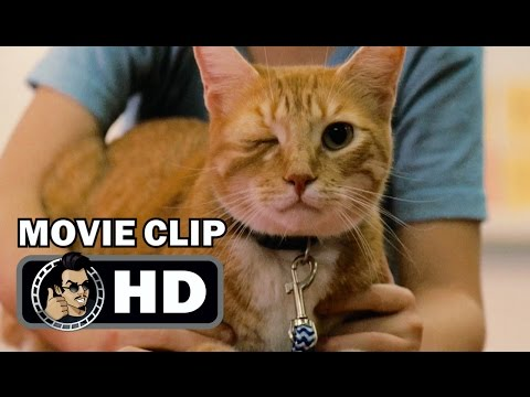 GIFTED Movie Clip - One Eyed Cat (2017) Chris Evans Drama HD