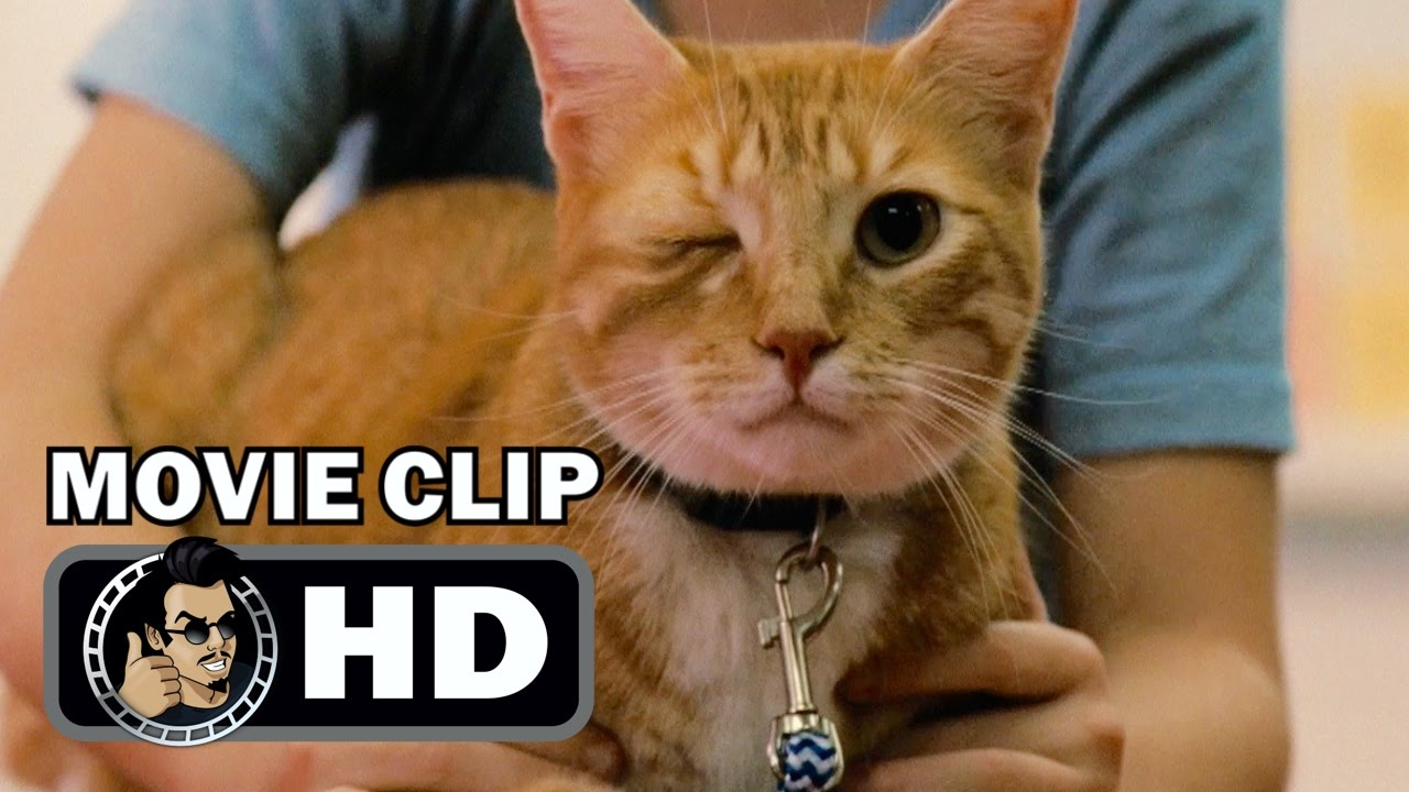 gifted movie clip
