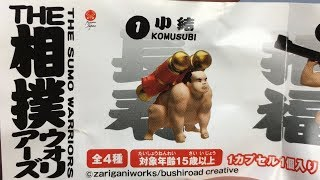 THE SUMO WARRIORS