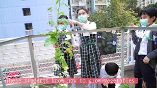 Publication Date: 2021-04-29 | Video Title: 2021-04-30 Garden