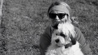 Pieskie Życie Pies To Nie Zabawka