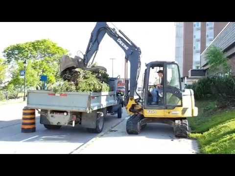 "Rodd Grand Hotel Yarmouth Shrub Removal. ""One bush load!"""