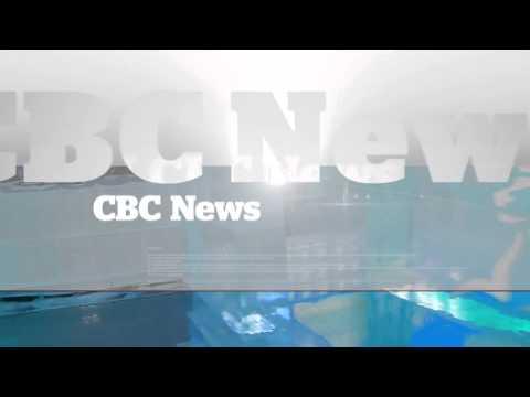 CBC News Toronto at 5: Thursday July 24, 2014   CBC Toronto