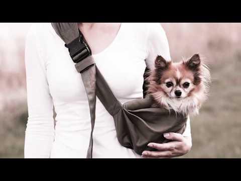 4 Lazy Legs mochila para perros