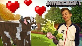 Minecraft ЭПИЗОД 5 Ферма в Майнкрафт Приключения героя на ферме с овцами
