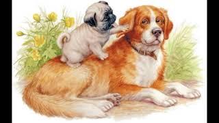 Играющие собаки   Константин Ушинский    читает Павел Беседин
