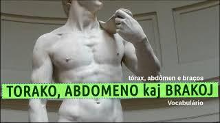 5 1Vocabulário em Esperanto #4   tórax, abdômen e braços