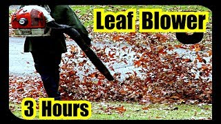 Leaf Blower Sounds | 3 hours of Leaf Blower Sound Effect