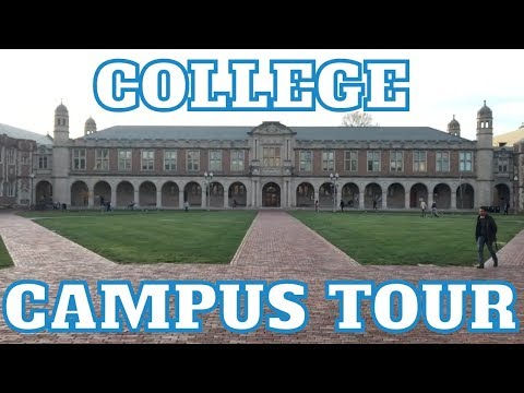 Washington University In St. Louis (WashU) Campus Tour!