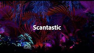 #Scantastic | Adobe MAX Sneaks 2020