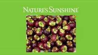 Сильные Природные Антиоксиданты-Фрукт Мангостин(мангостан),Экстракт Виноградных Косточек,Селен,Овощи
