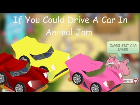 If You Could Drive Cars In Animal Jam
