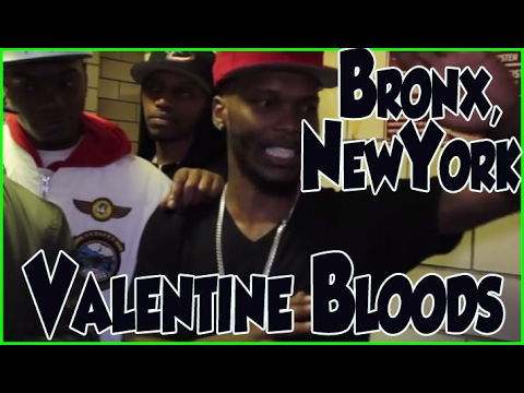 Schön Ty Valentine From The Valentine Bloods In The Edenwald Projects In The  North Bronx, New York
