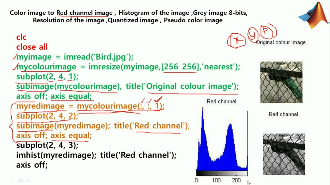 MATLAB CODES - Color Image to Red Channel,Gray,Pseudo color ,Quantized Image