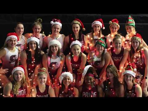 Springfield College Women's Gymnastics Team 2018