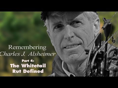 3 Phases Of The Whitetail Rut: Remembering Charles Alsheimer