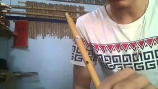 Thắm sáo - Hướng dẫn thổi sáo Thất Tình ( Trịnh Đình Quang)