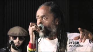 Larry White and The Majestic Roots Band - Reggae music