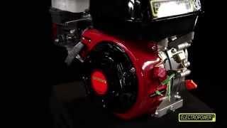 Moteur thermique OHV 6.5cv ELECTROPOWER