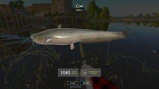Русская рыбалка 4! Продолжаем ловить рыбу на р.Волхов...