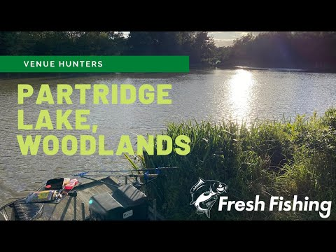 Woodlands Fishing Lakes, Partridge Lake, Thirsk - Coarse Fishing Evening Session