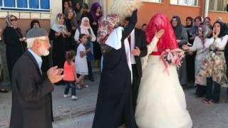Свадьба Дагестанцев Дидойцев в Турции.