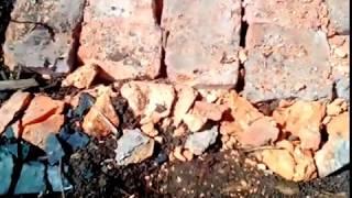 видео Дорожка из кирпича своими руками на даче (фото)