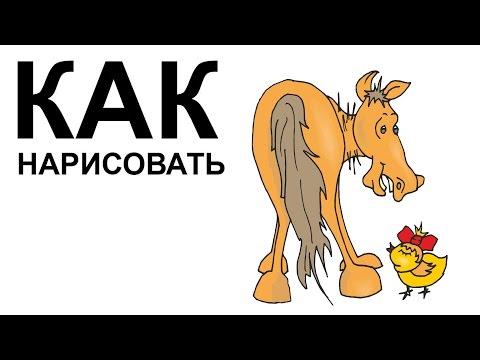 Рисунки лошадей карандашом. КАК  НАРИСОВАТЬ ЛОШАДЬ поэтапно