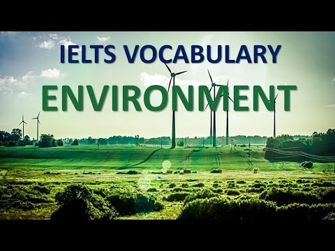 Vocabulary you MUST have for IELTS test band 8 | Topic environment