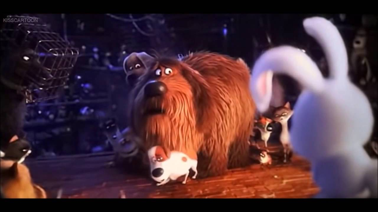 Download The Secret Life of Pets- Snowball's Best Moments
