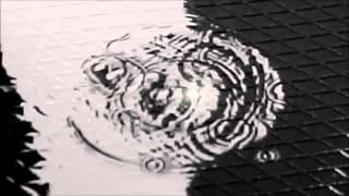 Cirkels - Herman Van Veen