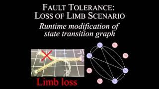Model-free control framework for multi-limb soft robots